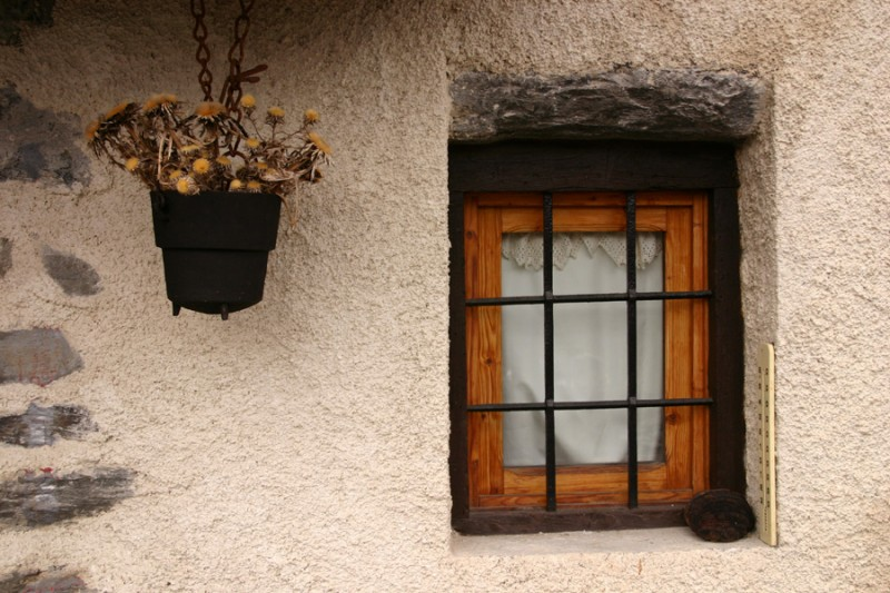 The flower pot and window frame
