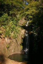 Waterfall in Waitakere Ranges