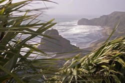 Windy view of Piha beach