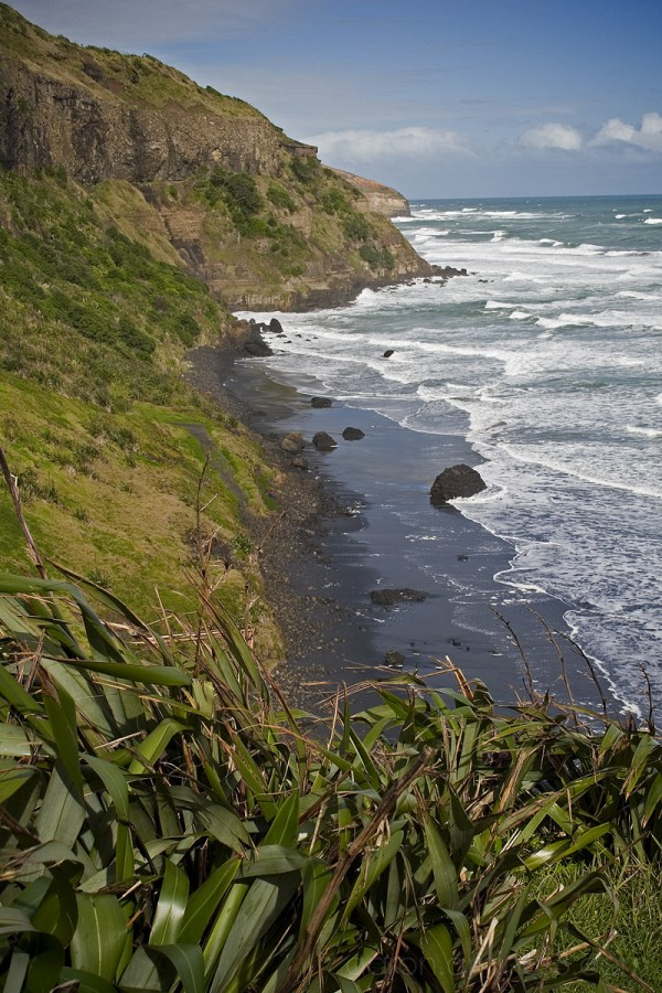 Muriwai Beach, west coast of New Zealand