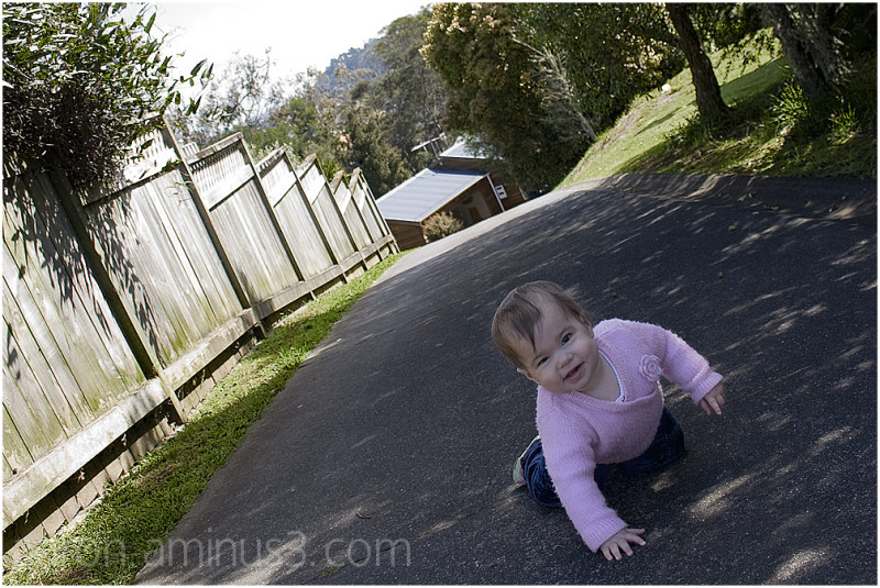 Solen crawling up the driveway