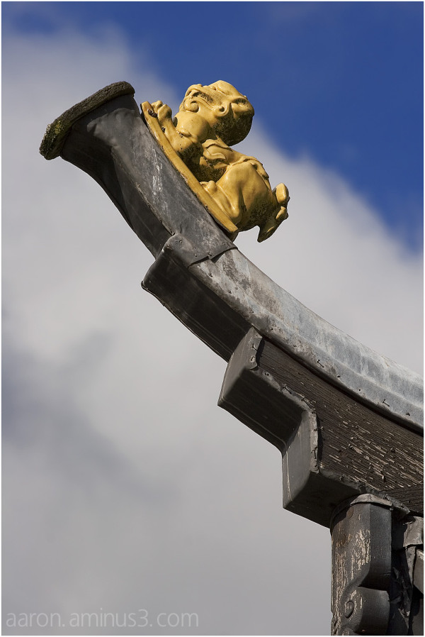 Tiny Chinese dragon on the horn roof