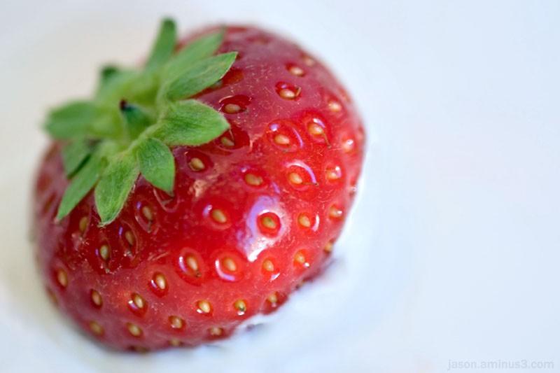 Strawberry Cream Macro
