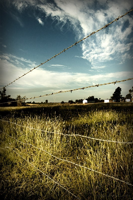 kansas barbed wire