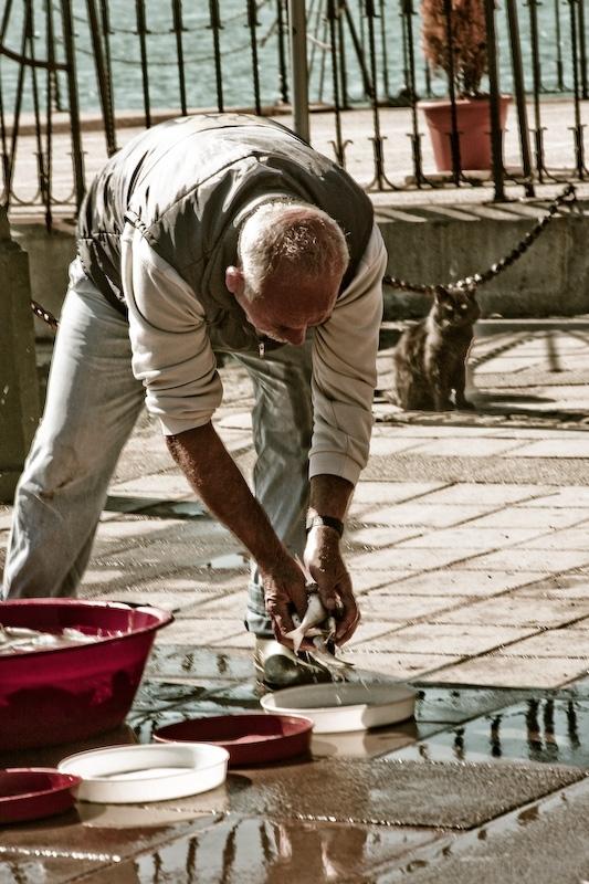 Istanbul fish seller
