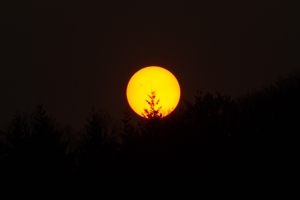 sun orb