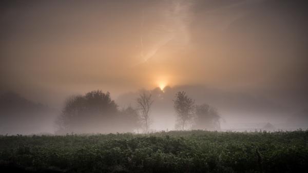 moody fog sunrise