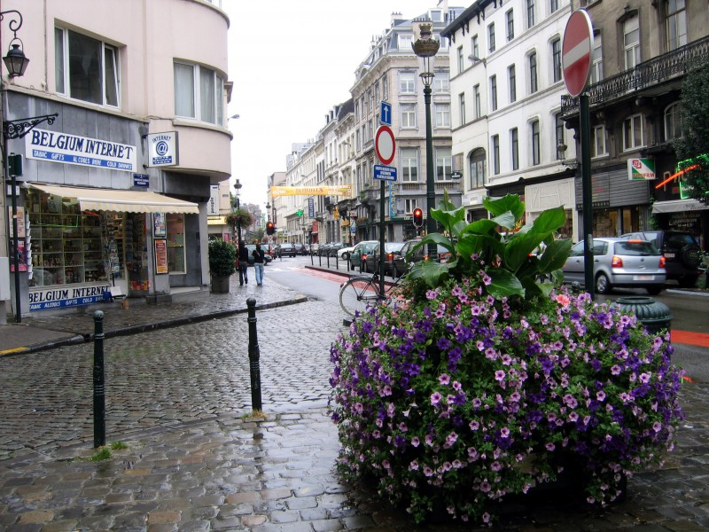 Rainy Day in Brussels