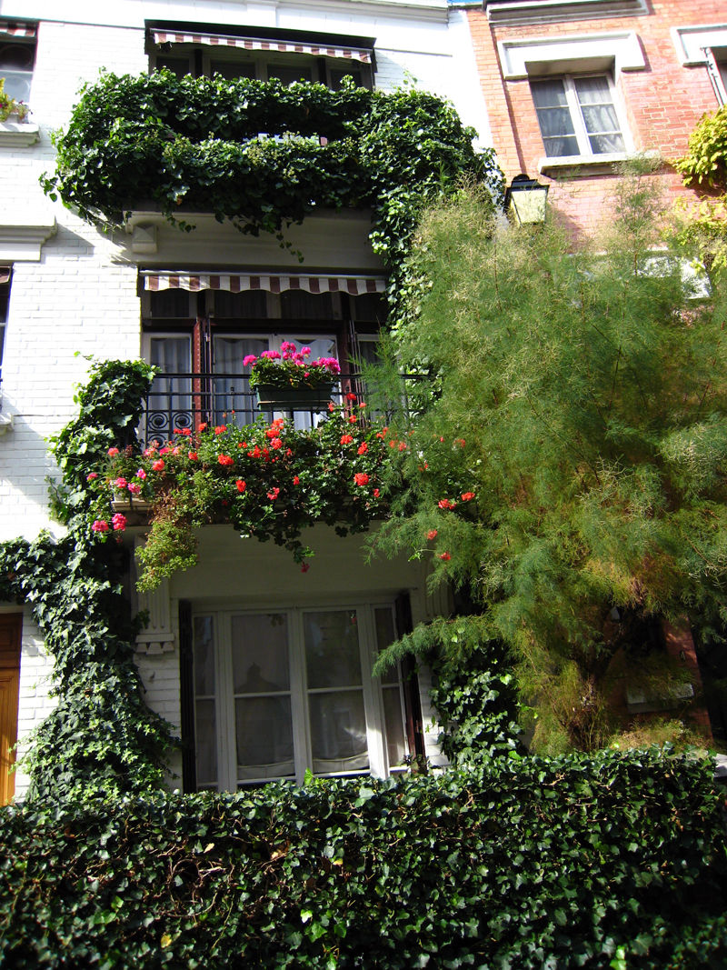 Paris Balcony With Flowers Cityscape     Urban Photos Aminus3 Of on 961 html