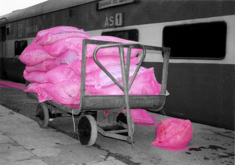 Holi Bags at the station