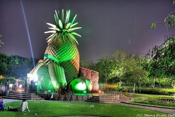 NTR Park at night pineapple