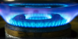 Cooking gas stove flame