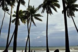 Corbyn's Cove Beach @ Andaman