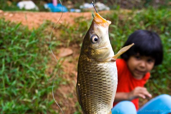 Fishng