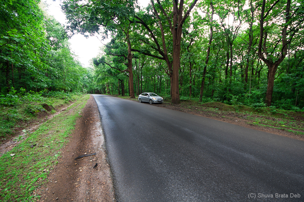 Agumbe Trip #3, On the way