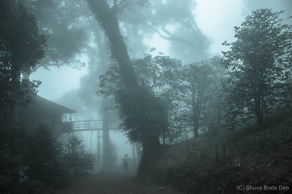 Fog reminds us: Life is not always black and white