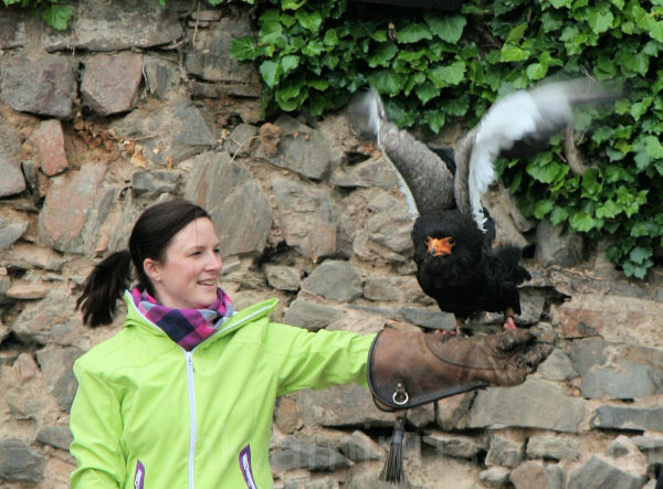 Kerstin with a bird