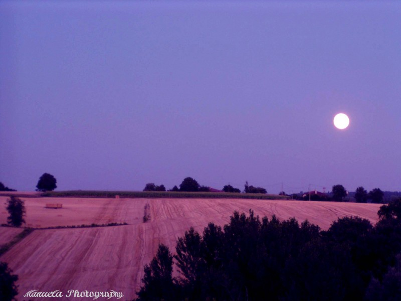 full moon, summer, field, south France
