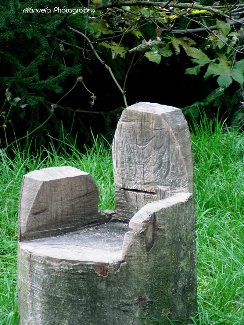 wood carved chair throne