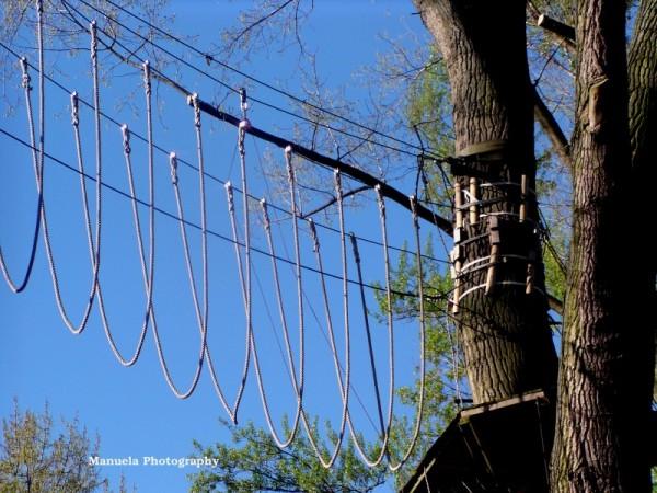 ropes trees sky park koeln germany