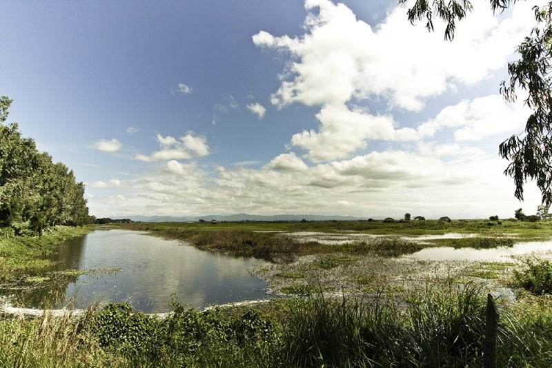 candaba swamp
