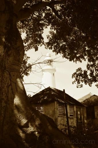 Jamaica Lighthouse I
