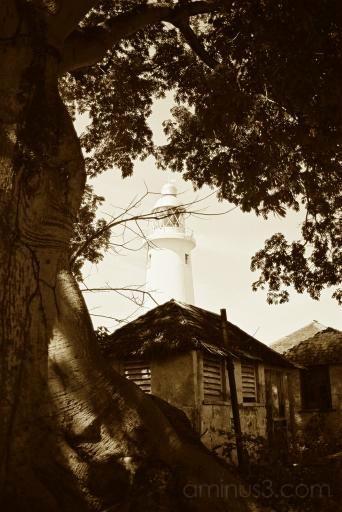 Jamaica Lighthouse I