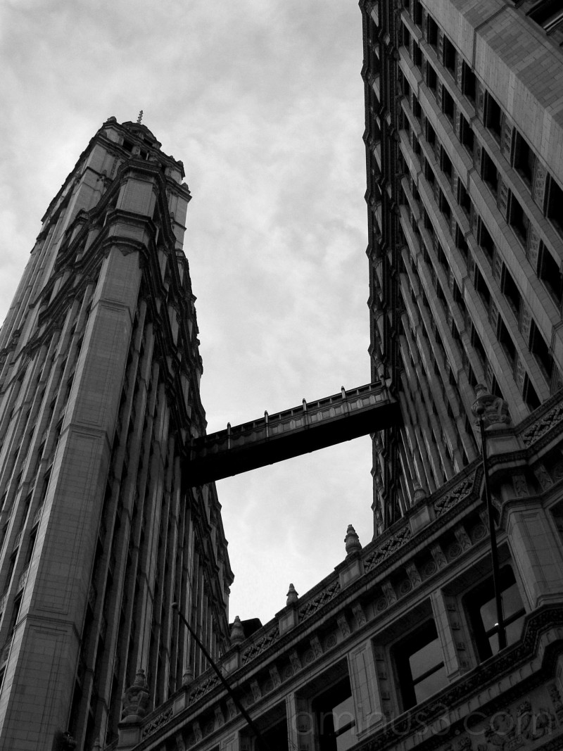 My Chicago: Wrigley Building