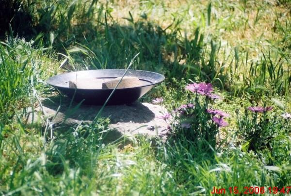 Pan in the grass