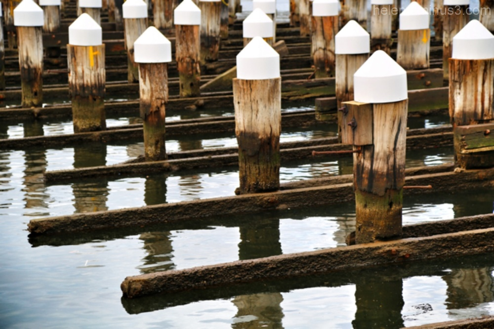Around the docks