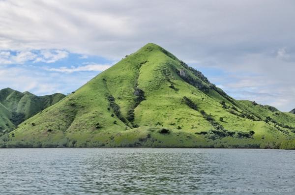 Rinca Island 1