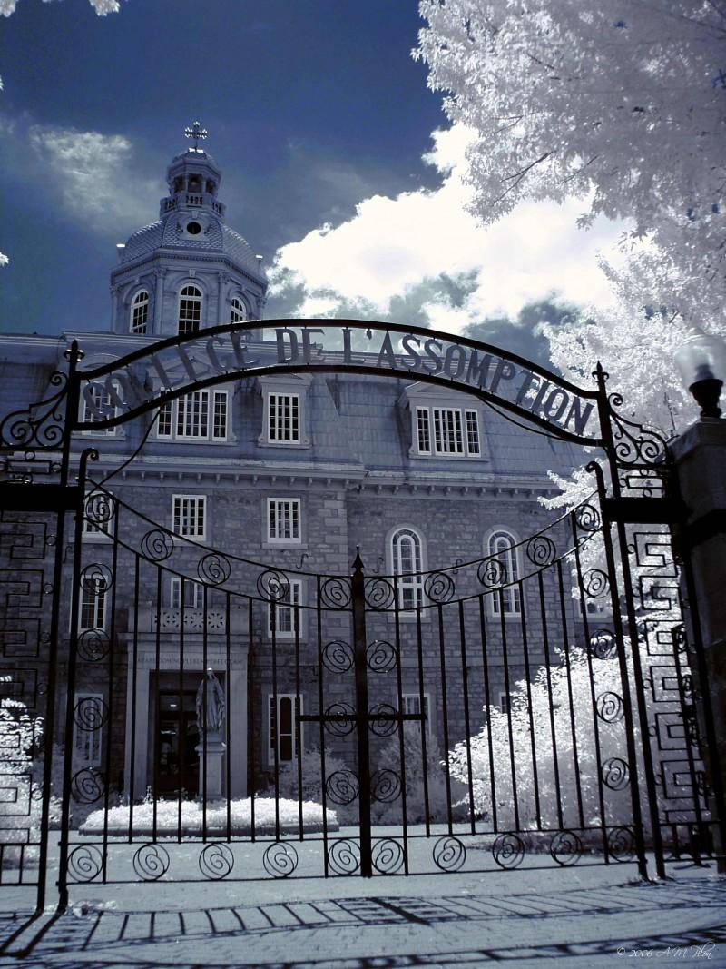 Collège l'Assomption