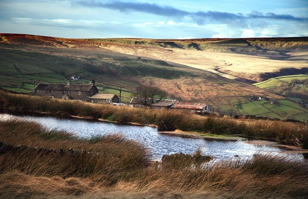 Pennine Moorland