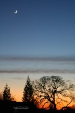 Winter Dusk in the Sierra Foothills