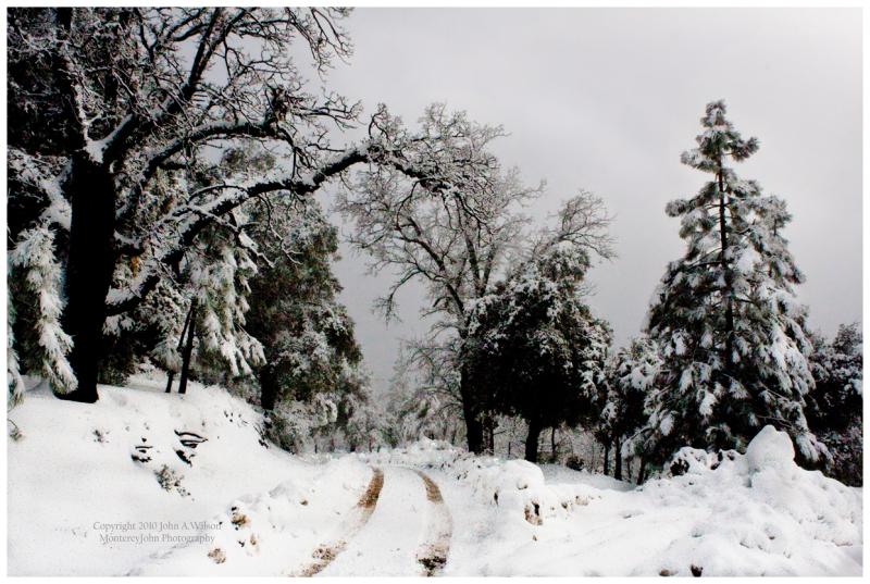 Chews Ridge Snowfall