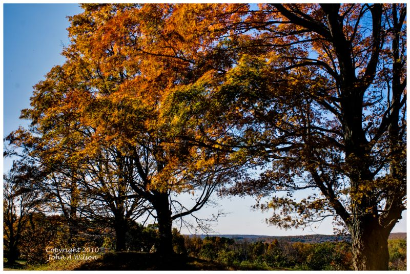 Fall colors Bethlehem, CT