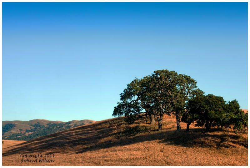 Late afternoon in the San Benito Hills