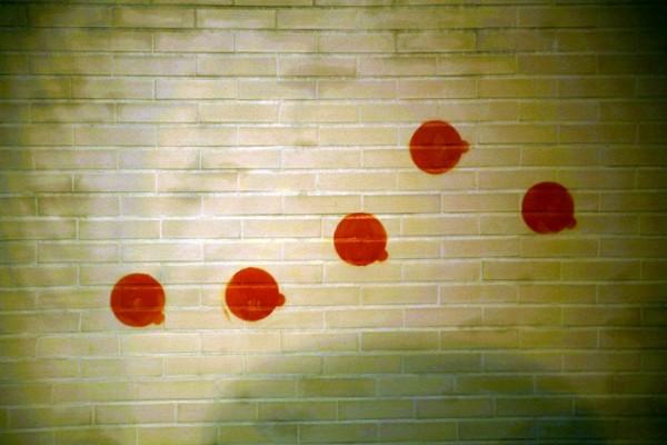 MnX photo wall 2