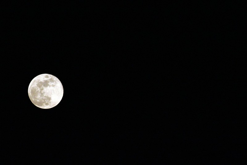 Filha da Lua