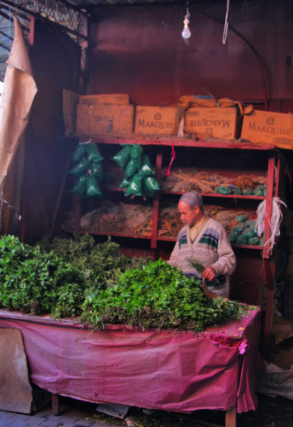 In the Medina of Marrakesh