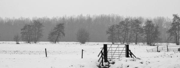 holanda ameide neve inverno