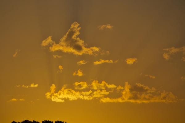 leiria sunrise outono