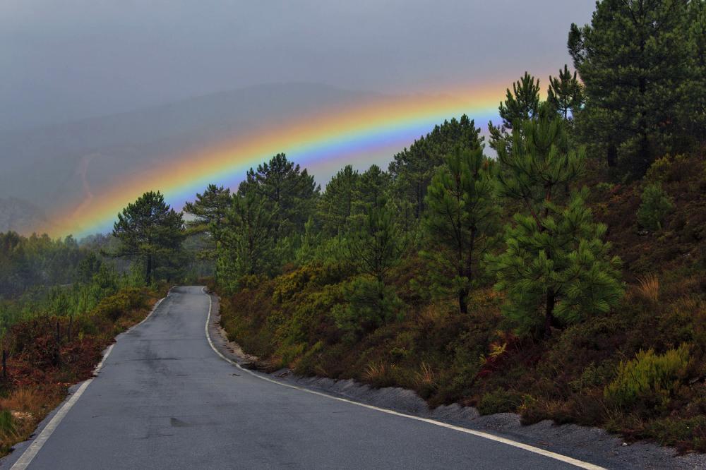 lousã floresta arco-iris