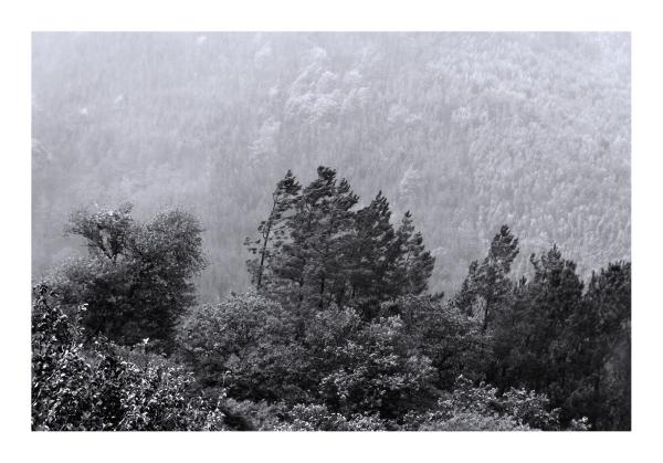 lousã outono aldeia Aigra-Nova nevoeiro