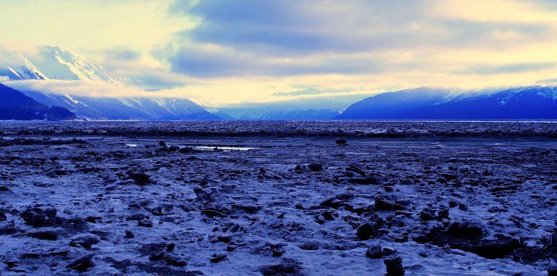 Ice Field (Turnagain Arm, Alaska)