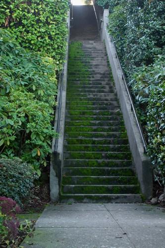 Karen's Stairs 3