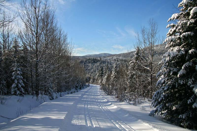 Cross Country Ski Trails - Pistes de ski de fond
