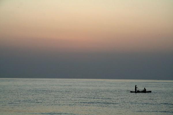 La pêche du matin - Morning fishing