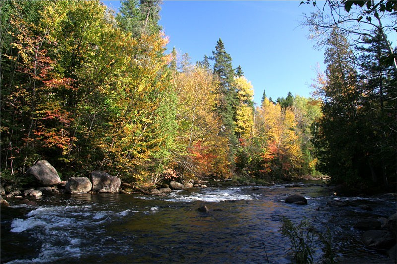 Rivi&egrave;re Jaune