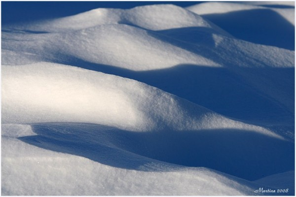 Shadows on snow -  Ombres sur la neige